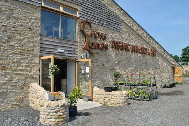 Cross Lanes Organic Farm